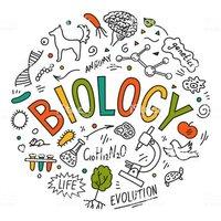 Biology (Theory)-553 -S4.20